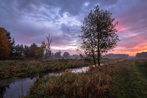 mazovia poland landscape nature autumn sunrise morning dawn clouds sky water river stream tree