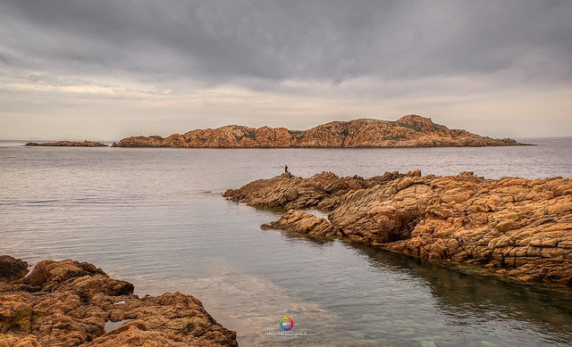 THE Solitary Fisherman