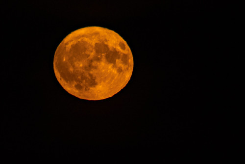 Hunters moon night
