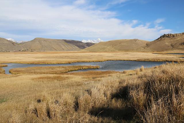 Autumn on the National Elk Refuge