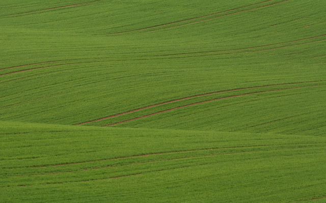 Minimalist Field Waves