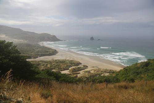 newzealand sandfly bay dunedin otago peninsular landscape fog ocean sand dunes scenic travel