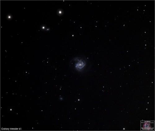 Galaxy M61 in Virgo