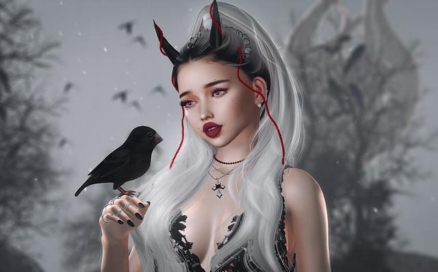 • My little bird •