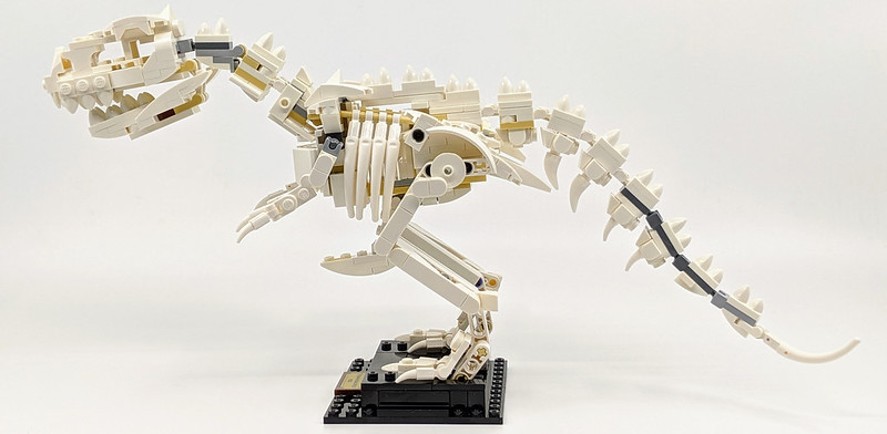 21320: LEGO Ideas Dinosaur Fossils Review
