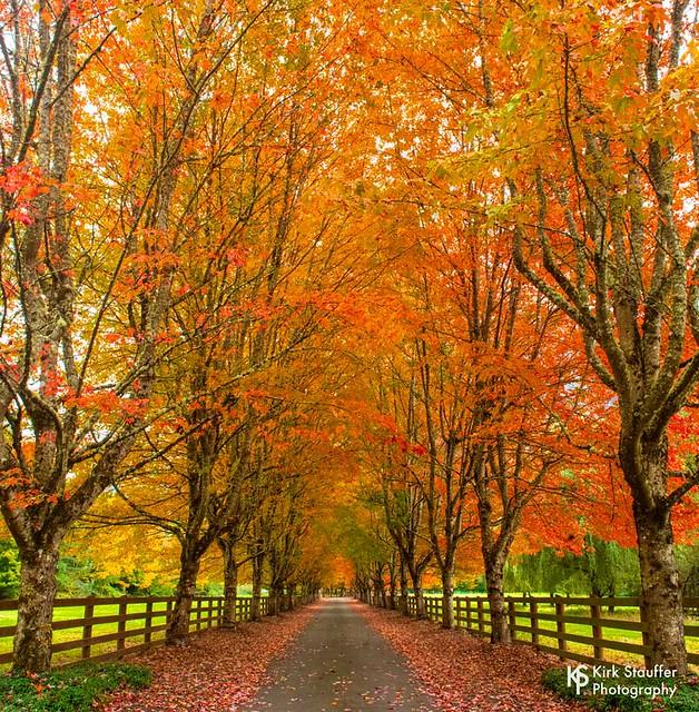 Rockwood Farm in Snoqualmie, Washington