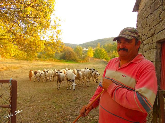 Águas Frias (Chaves) - ... o pastor e o seu rebanho ...