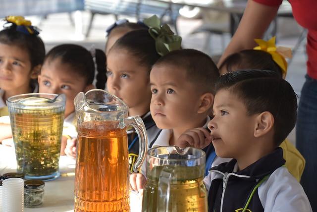 """Feria Alimentaria """"Nuestras Acciones Son Nuestro Futuro"""""""