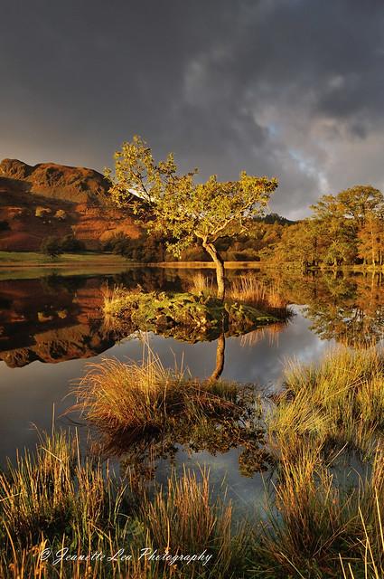 Light, Moody Skies & Autumn Colours
