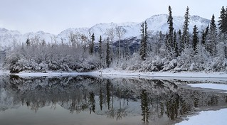 Quiet Winter Reflections