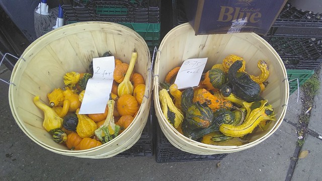 Gourds, 1 for 75¢ and 2 for $1 #toronto #dovercourtvillage #77foodmarket #gourds #squash #hallamstreet #dovercourtroad