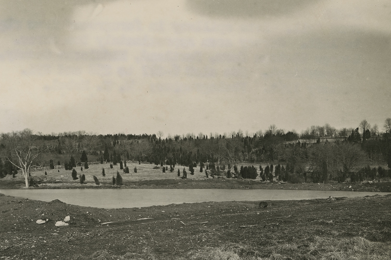 Full pond, 1951