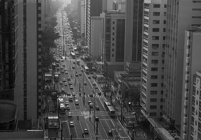 [ Avenue ]