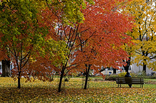 Sitting on park benches