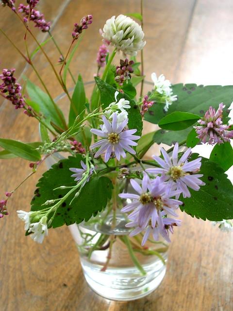 October Wild Flowers