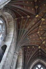Peterborough Cathedral ceiling 2