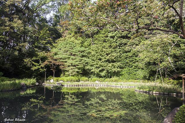 Jardines del Santuario Heian - Kioto
