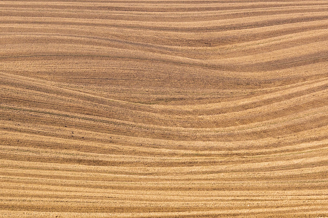 After the harvest, fields near Wantage, Berkshire