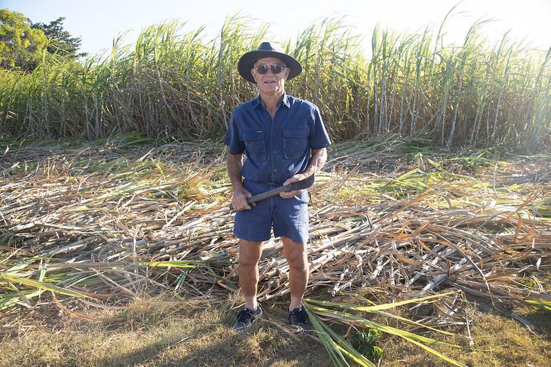 proud cane cutter