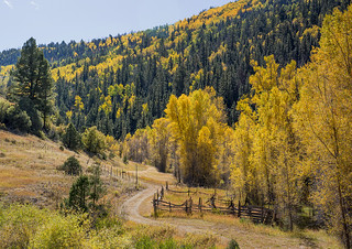 Back road into the San Juan Mountains, near Dallas Divide, Colorado.