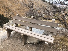 I didn't expect a bench this far back in the wilds of Great Basin NP