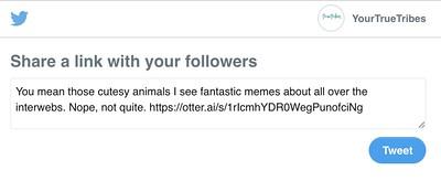 Otter Twitter Share