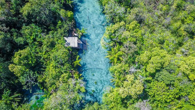 Cruzeiro pelo Pantanal Sul-mato-grossense e as Belezas de Bonito