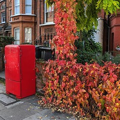 We like to colour match our fly tipping in this neighborhood. (Note - I've no idea if this is just waiting for collection, but I like that it matches the autumn leaves). #nw6
