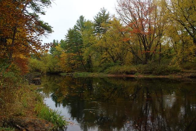 Ashuelot River in Swanzey
