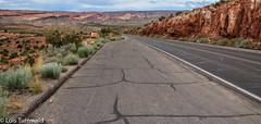 Road thru Arches