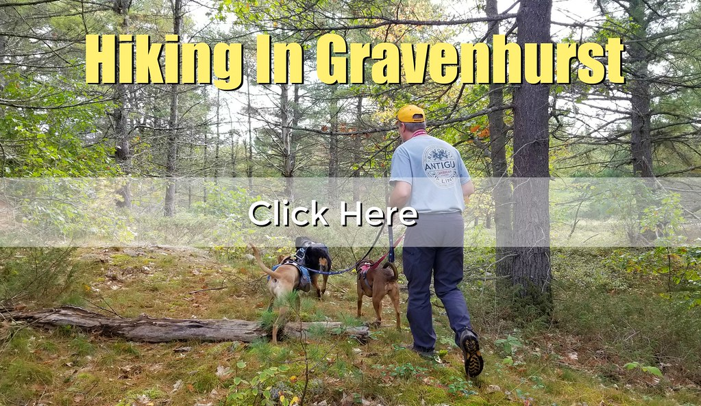 hiking in gravenhurst