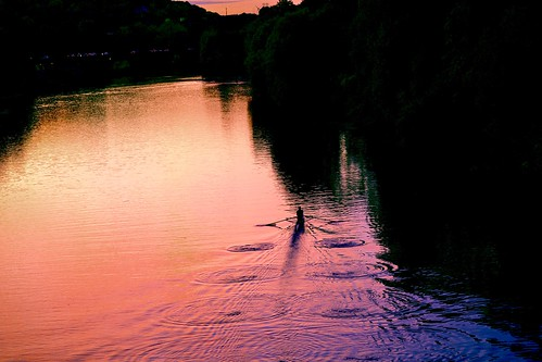 rowing rower sunset nature september sport peace saar saarland germany river evening color try
