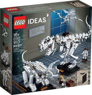 打造迷你恐龍博物館的第一步?! LEGO 21320 Ideas 系列【恐龍化石】Dinosaur Fossils