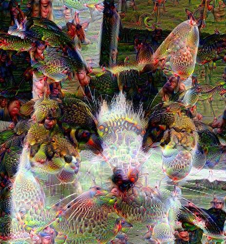 DeepDream Image Processing