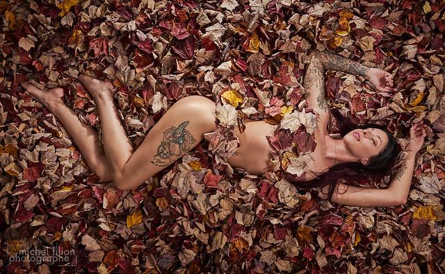 uǝllɐℲ leaves & Beauty pǝɹǝʌoɔun