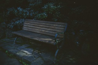 A bench to sit on
