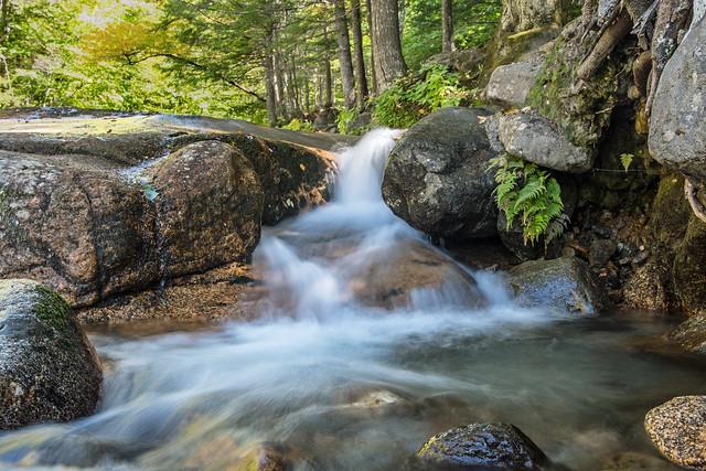 Flume Brook Falls Explored 10182019