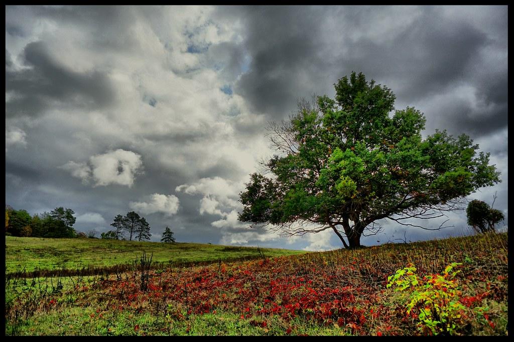 Herbstwetter // autumn weather