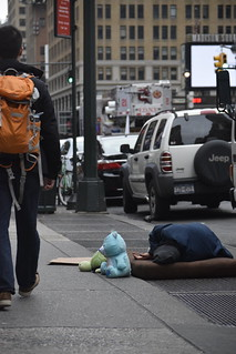NYC- Sleeping On Street w/ Stuffed Animals