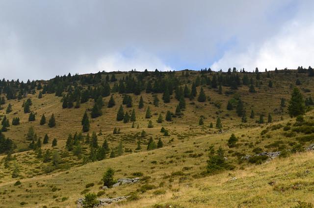 Alpine Views [Forni Avoltri - 14 September 2019]