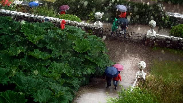 under rain vanagart 2019 jpg