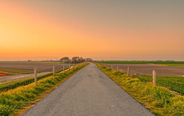 Country roads, take me home. ♫