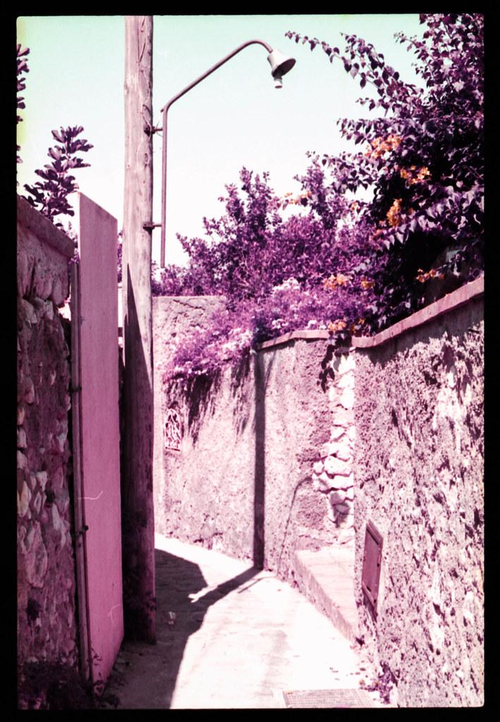 Alley (Lomochrome Purple)