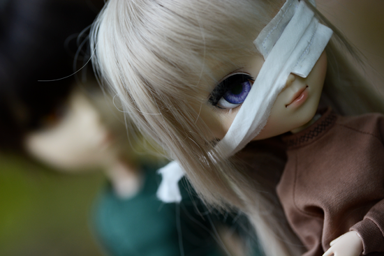 DSC_6017