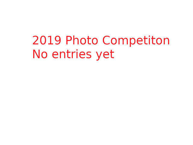 2019 Photo Competition