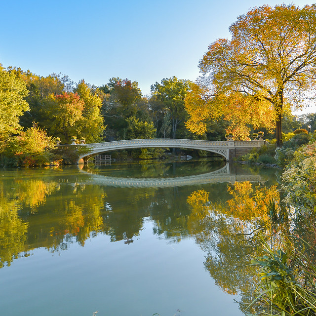 Central Park early autumn by the Lake and the Bow Bridge, Manhattan, New York City