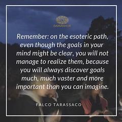 Quote of Falco Tarassaco