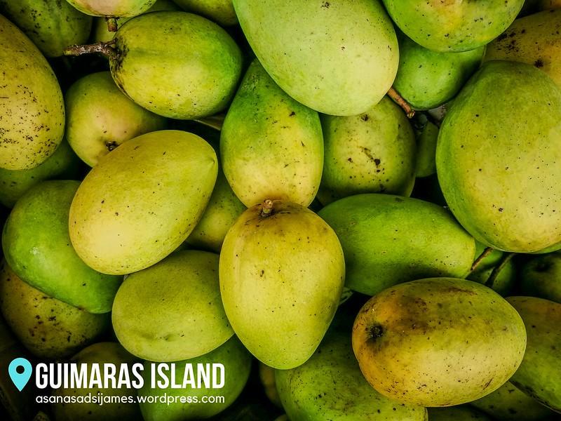 GUIMARAS ISLAND 23