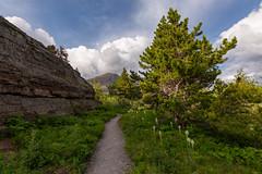 Take a Trail