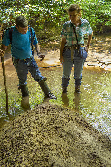 Ken Pasternack, Barbara Rosensteele, bear tracks, Fentress County, Tennessee